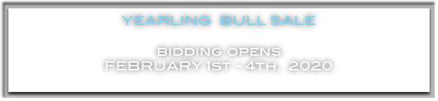 YEARLING  BULL SALE